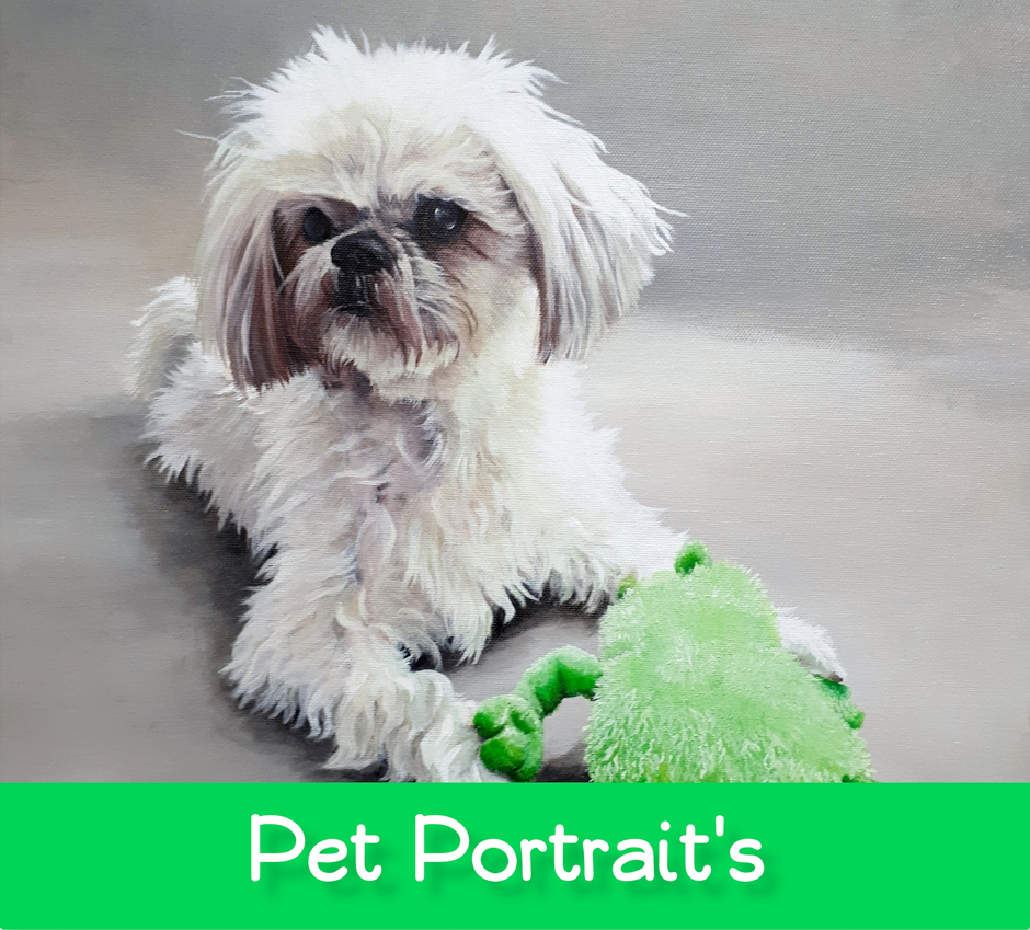Pet Portraits From The Ashford Studio.